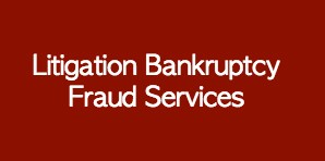 Litigation Bankruptcy and Fraud Service